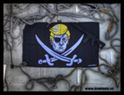 Trump pirate
